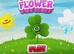 Clover Flower games