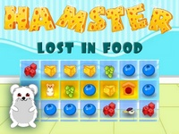 Hamster Lost in Food games